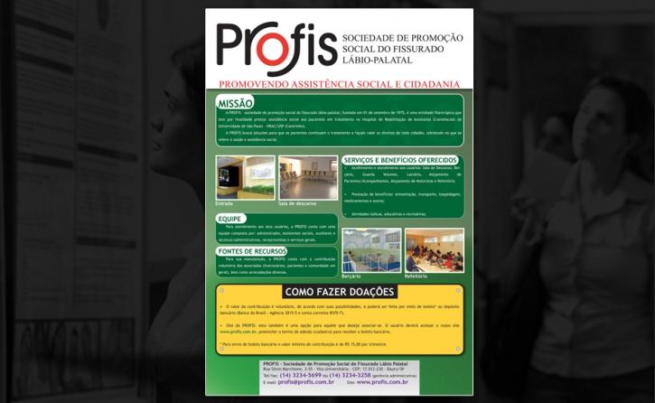 Painel Institucional - PROFIS